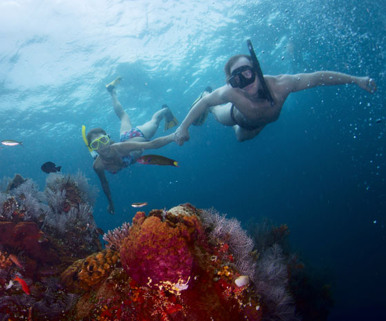 Caribbean Cruise Couple Underwater