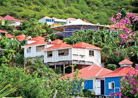 Gems of the Leeward Islands