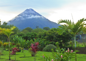 Monteverde Cloud Forest & Arenal Volcano Cruise Tour