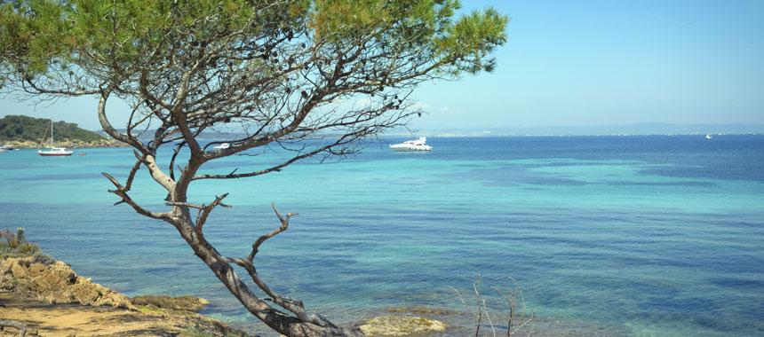 Riviera Romance Cruise