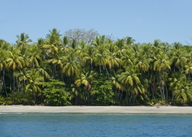 http://media.windstarcruises.com/media/destinations/panama_canal/Parida_island_Panama%20280%20x%2020