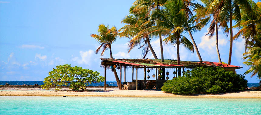 Star Collector: Sea of Cortez & Tahitian Lagoon Marine Life Spectacular
