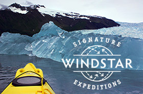 new at windstar