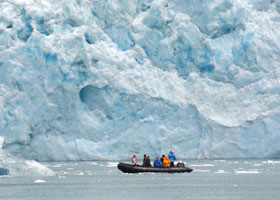Signature Expedition: Zodiac Tours
